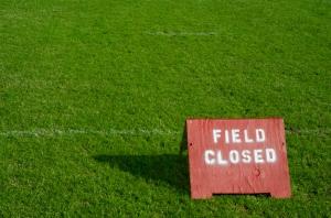 football-field-886398-print