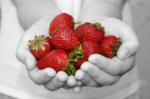 handful-of-strawberries-761253-print