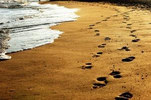 venice-beach-776428-print