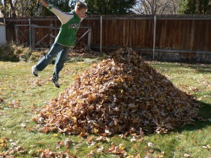 boy-jumping-leaves-931467-print