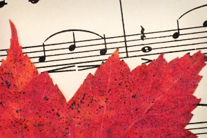 Red Leaf on Vintage Music