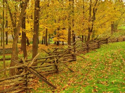 kirtland-fence-935301-print