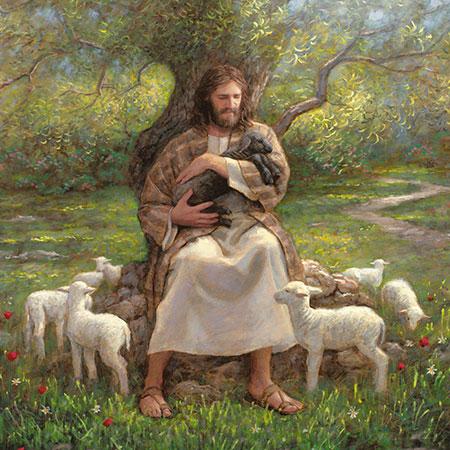 jesus-black-lamb-holding-mcnaughton_1664827_inl